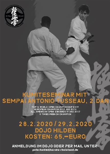 Kumite seminar with Antonio Tusseau